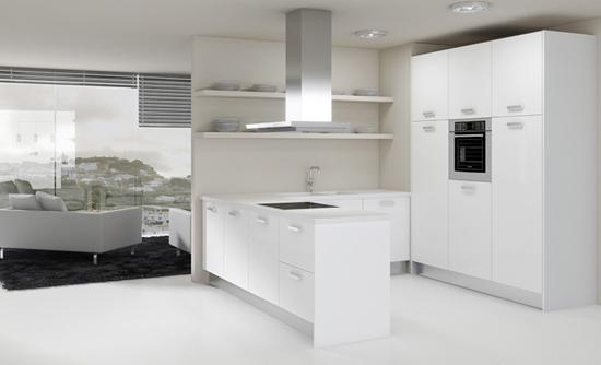 Rehacer los gabinetes de cocina baratos for Gabinetes de cocina modernos